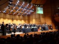 Concerto Verdi Arlequin